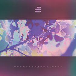 Fragmented consciousness