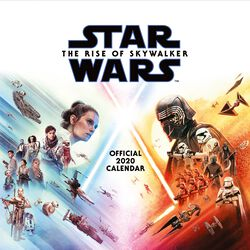 Episode 9 - The Rise of Skywalker Muurkalender 2020
