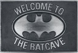 Enter The Batcave