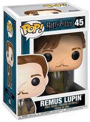 Remus Lupin Vinylfiguur 45