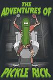 Adventures Of Pickle Rick