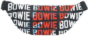 David Bowie Warped