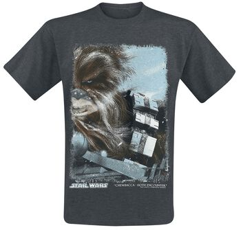 Hot Encounter - Chewbacca