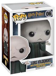 Lord Voldemort Vinylfiguur 06