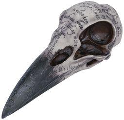 Edgar's Skull Raven