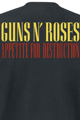 Appetite For Destruction - Cover