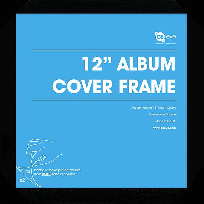 12 Album Vinyl Frame Posterlijst Large